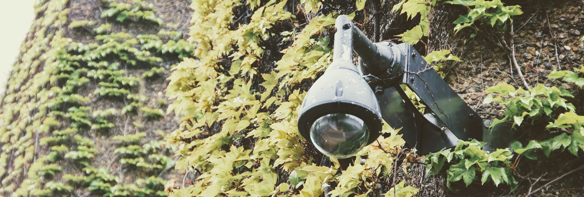 מצלמת אבטחה